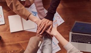 5 Steps to Optimizing Team Performance
